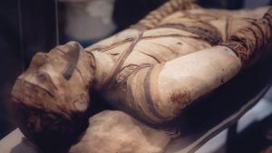 Mummies Put Paid to Ancient Egyptian Royals' Spine Problem